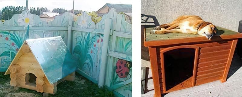 Вулична будка для собаки: будиночок і буда, літня, зимова, для виводка та інші 3