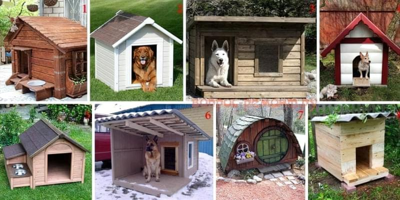 Вулична будка для собаки: будиночок і буда, літня, зимова, для виводка та інші 12