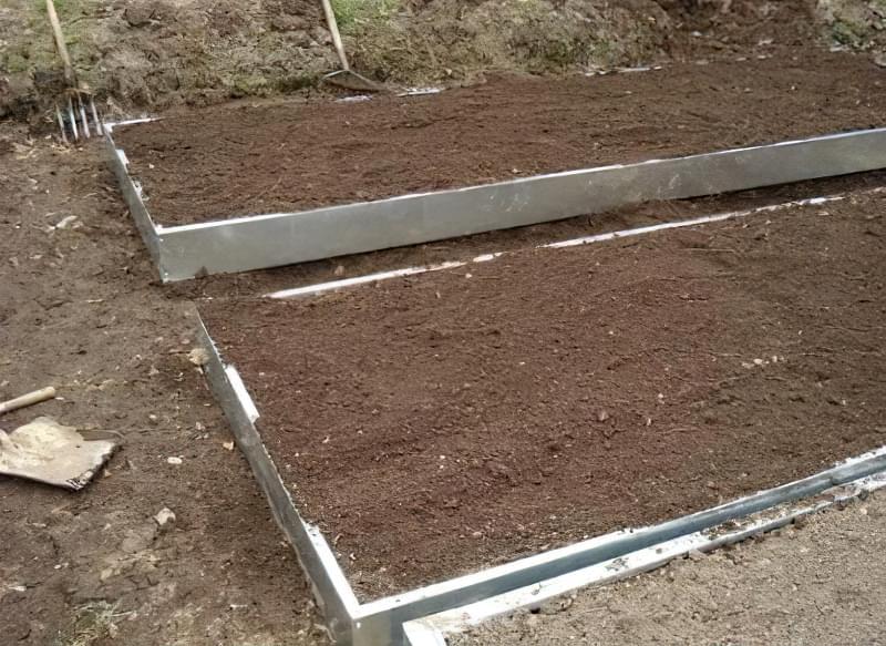 Як і коли садити часник 3