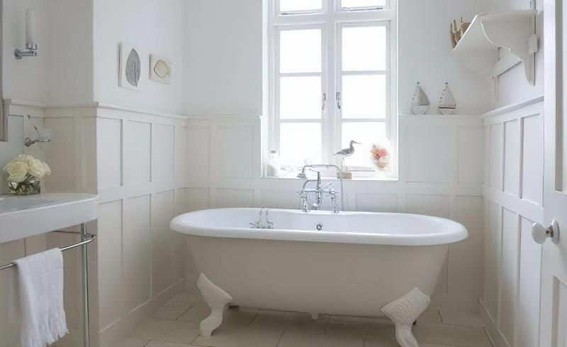 Комахи у ванній: що робити? 1