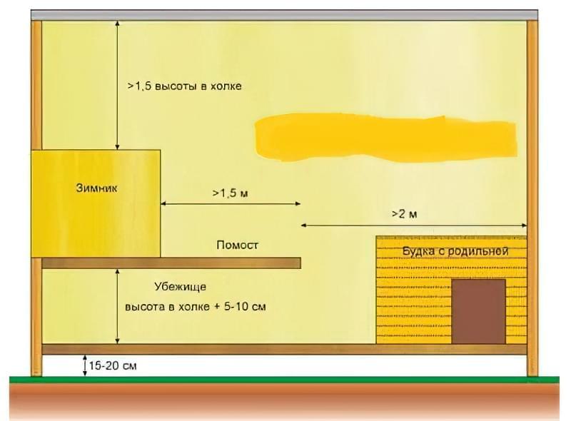 схема вольєра з помостом для суки з виводком