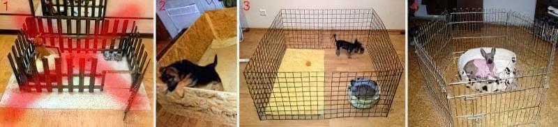 Вольєри для цуценят і маленької собаки