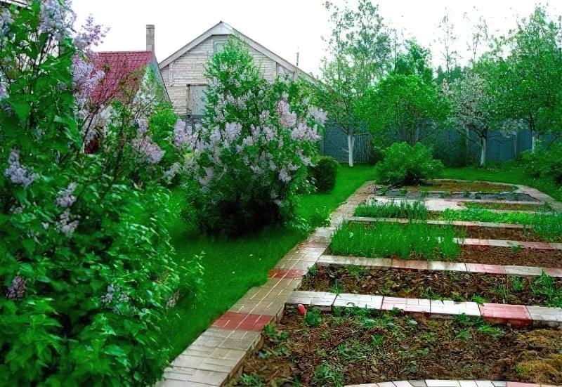 Ландшафтний дизайн і планування маленької земельної ділянки 5