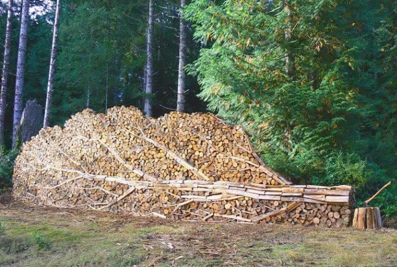 Ця дивовижна картина-панно створена із звичайних дров