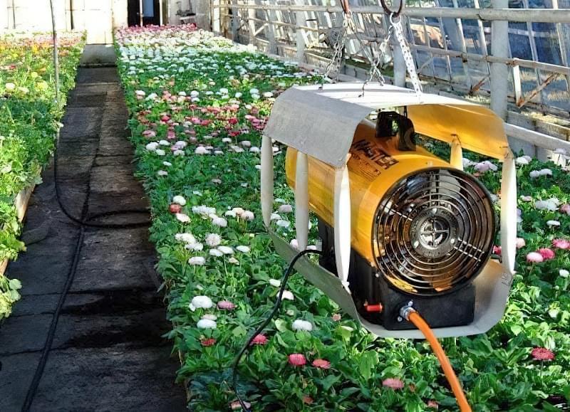 Опалення теплиці: способи обігріти теплицю взимку і ранньою весною 12
