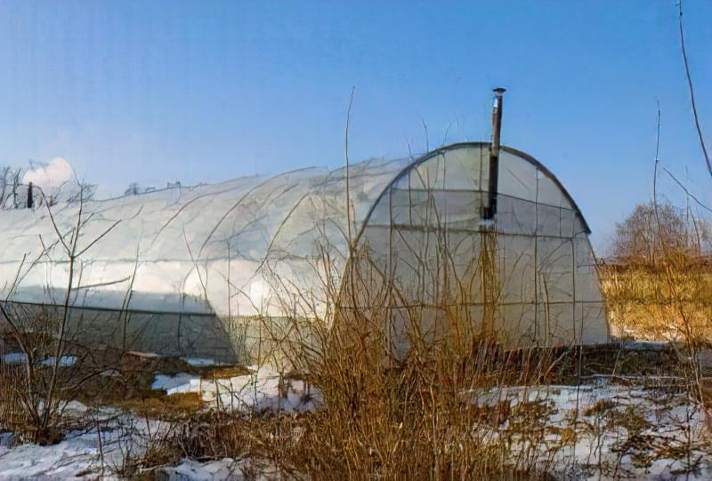 Опалення теплиці: способи обігріти теплицю взимку і ранньою весною 8