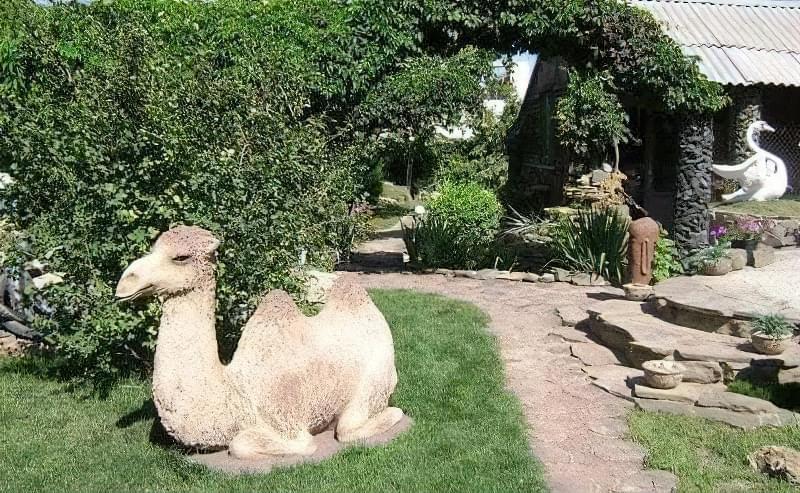 Вироби з цементу для саду: більше 20 ідей, інструкції та майстер-класи 14