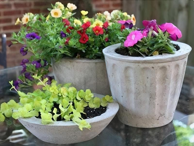 Вироби з цементу для саду: більше 20 ідей, інструкції та майстер-класи 9