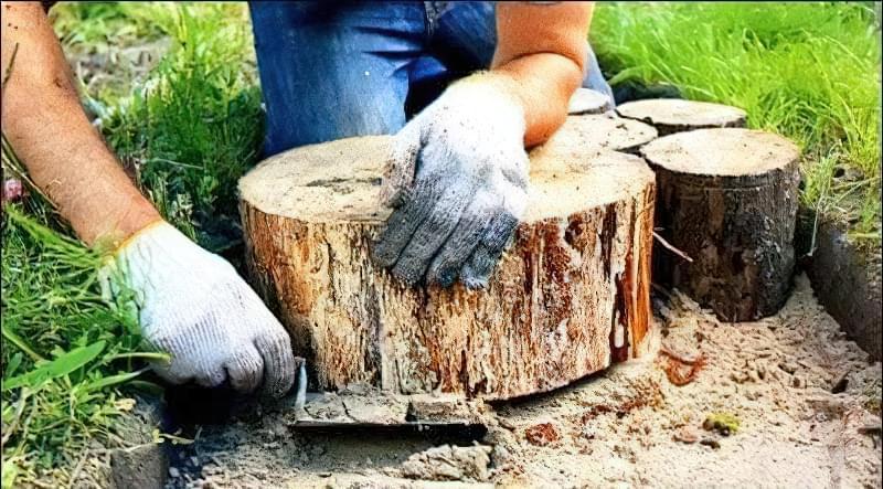 Доріжка із зрубів дерева своїми руками 4