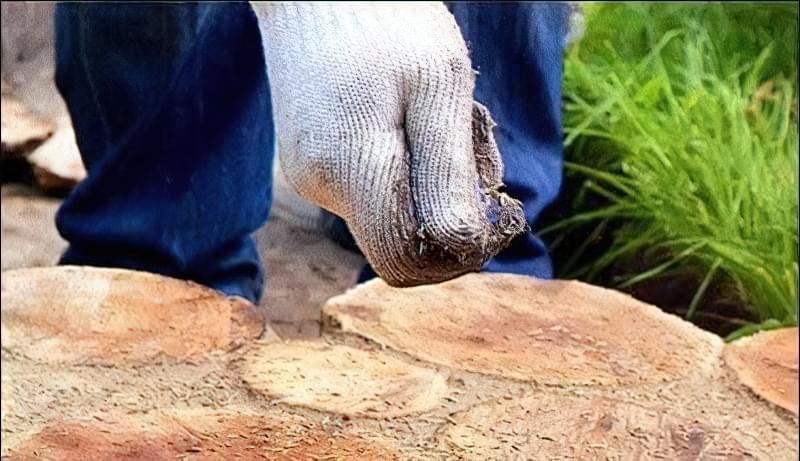 Доріжка із зрубів дерева своїми руками 6