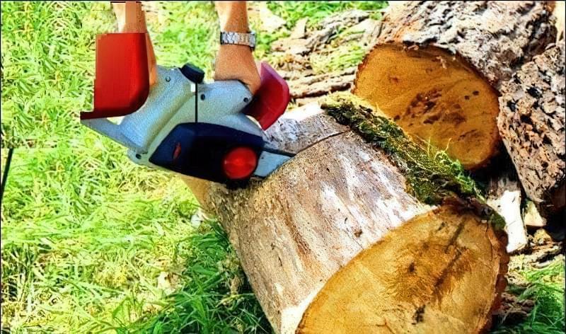 Доріжка із зрубів дерева своїми руками 1