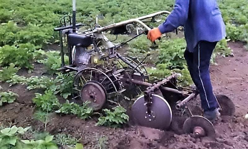 Підгортання картоплі мотоблоком: агротехнічне обгрунтування і нюанси процесу 6