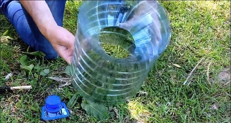 Верша из пластиковой бутылки своими руками