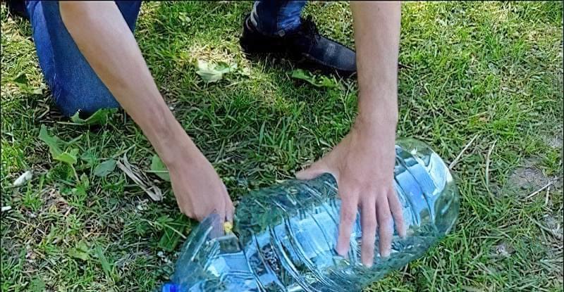 Верша из пластиковой бутылки своими руками 59