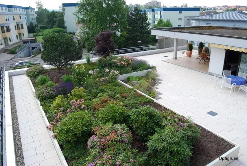 Зелені дахи: переваги та недоліки установки 1