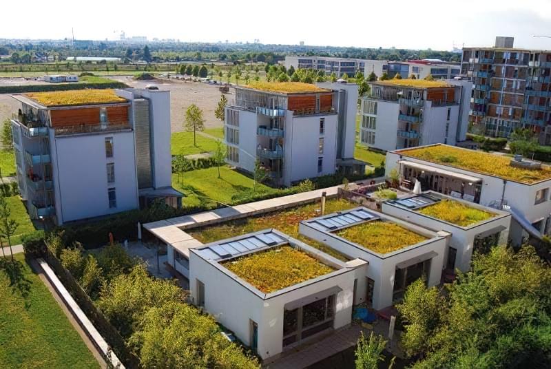 Зелені дахи: переваги та недоліки установки 4