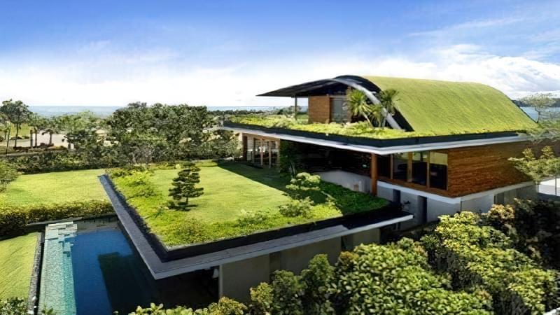 Зелені дахи: переваги та недоліки установки 2