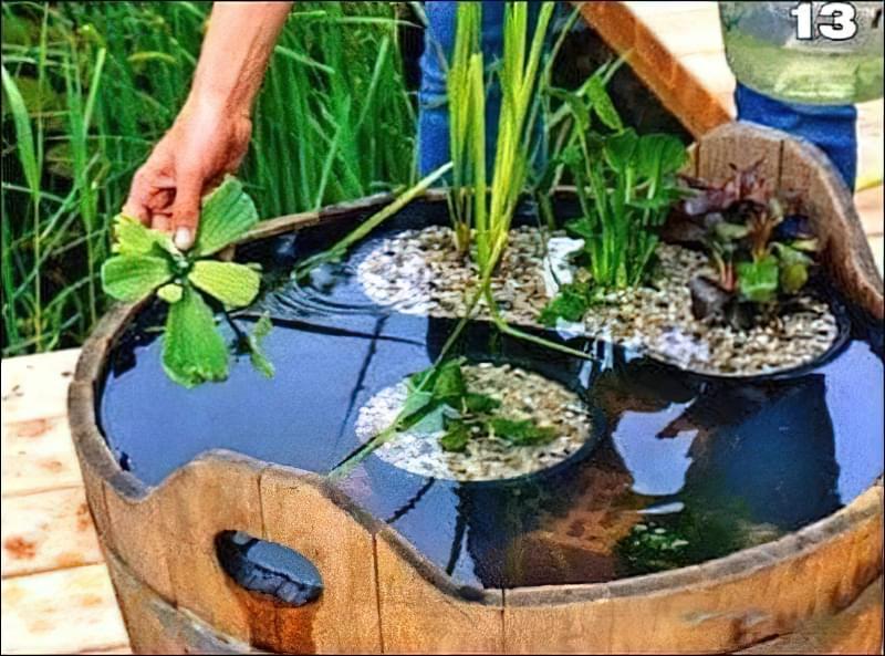 Міні-ставок своїми руками з дерев'яної діжки 6