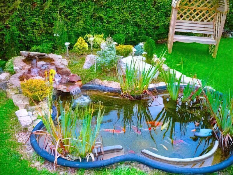 Облаштування ставка в саду 3