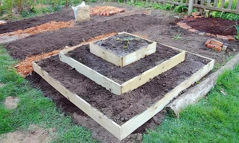 Вирощування полуниці в пірамідах 2