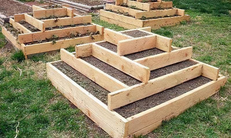 Вирощування полуниці в пірамідах 4