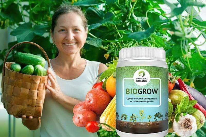 Для чого потрібно і як застосовувати біодобриво Biogrow 1