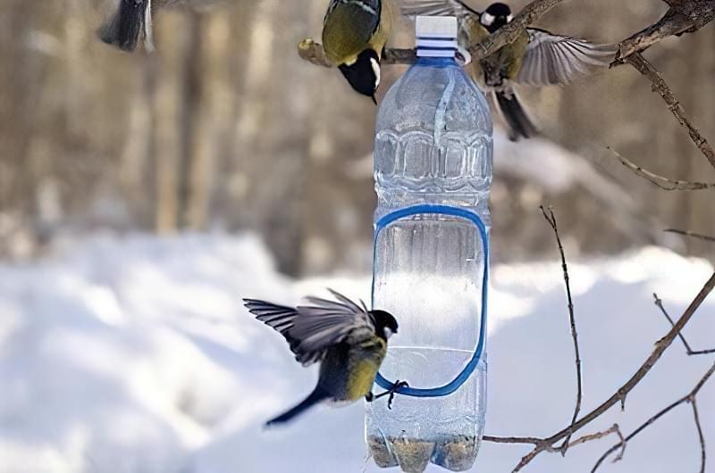 Як швидко і просто зробити годівницю для птахів з пластикової пляшки? 2