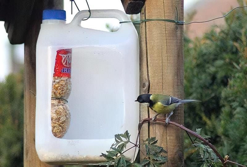 Як швидко і просто зробити годівницю для птахів з пластикової пляшки? 9