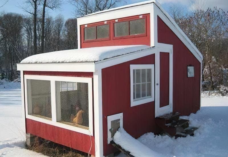 Спорудження зимового курника: планування, утеплення, обігрів 6