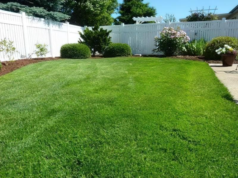 Стрижка газону і догляд за кромкою 2