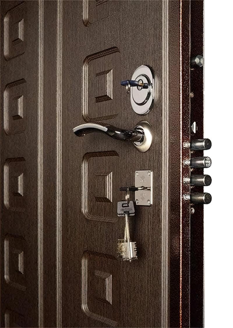 Як вибрати хороші вхідні металеві двері: конструкції, матеріали, захисні властивості 13