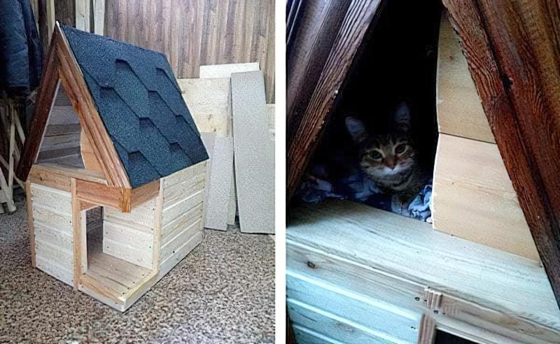 Будинок для кішки своїми руками-фото
