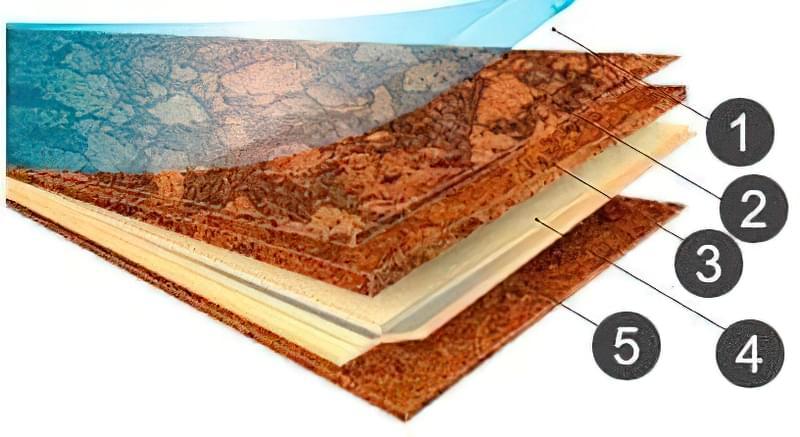 Коркова підлога: види, правила вибору, переваги і недоліки 7