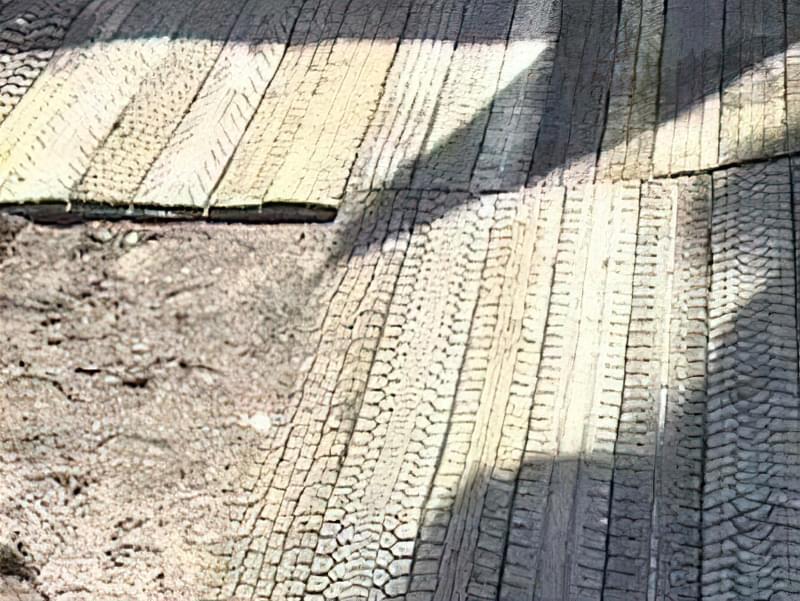 Садові доріжки зі старих покришок своїми руками
