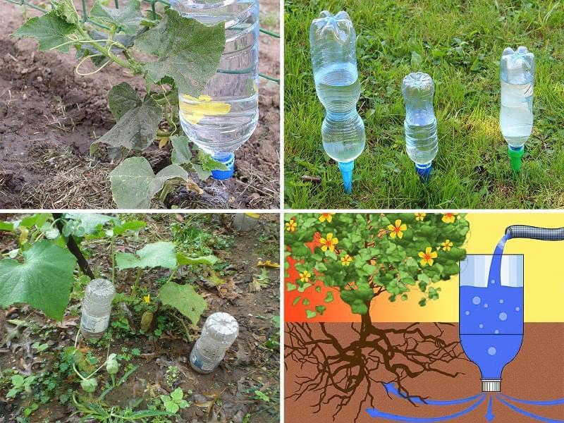Що можна зробити на дачі з пластикових пляшок 4