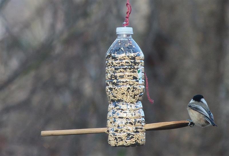 Що можна зробити на дачі з пластикових пляшок 8