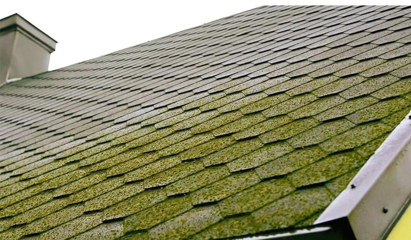Захист покрівельних покриттів від моху і забруднень 3