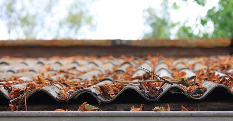 Захист покрівельних покриттів від моху і забруднень 1