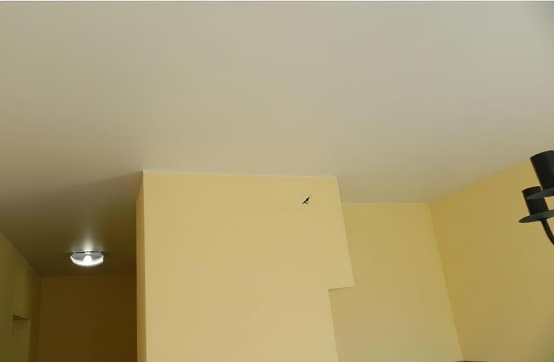 Звукоізоляція стелі в квартирі під натяжну стелю: види звукоізоляції 5