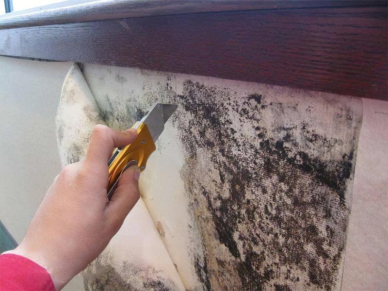 Реставрація старих шпалер своїми руками 4