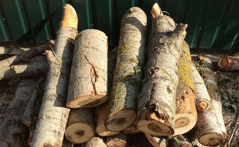 Вибираємо дрова для каміна 4